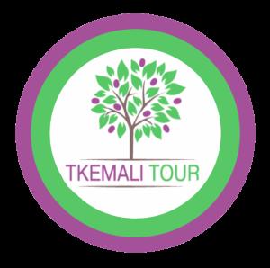 Путешествия по Грузии | Tkemali Tour